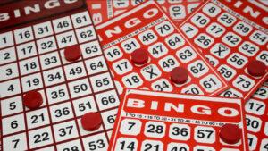 bingo online and offline cards