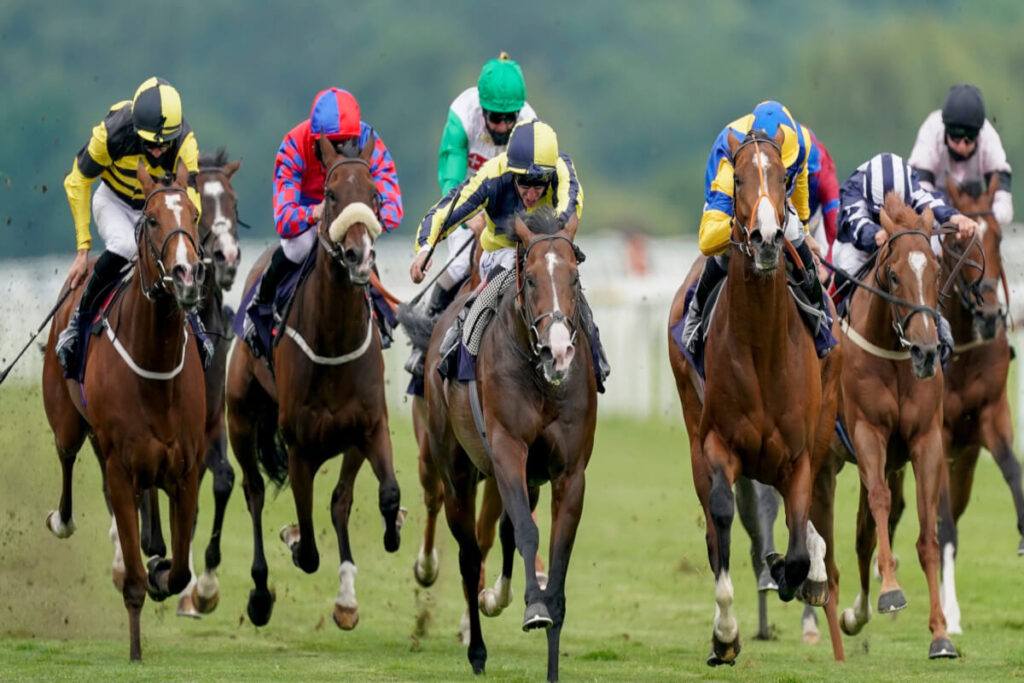 Most Iconic moments in horse racing history